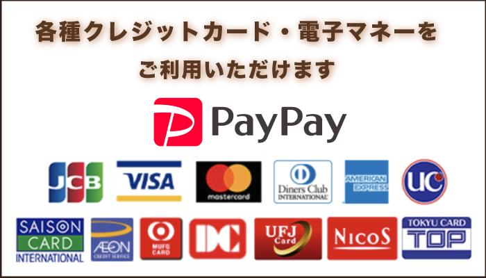 利用可能クレジット・電子マネー